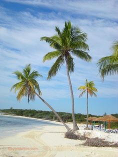 Private island owned and staffed by Royal Caribbean cruise lines. One more week! Bahamas Honeymoon, Bahamas Vacation, Bahamas Cruise, Cruise Vacation, Dream Vacations, Vacation Spots, Caribbean Cruise Line, Royal Caribbean Ships, Enchantment Of The Seas