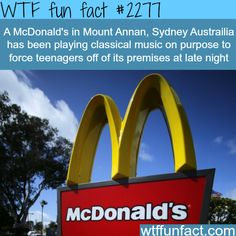 A McDonald's employee in the U. took a customer's order a little too seriously. (Reuters) A man in the U. was left puzzled after his McDonald's Mcdonalds, The More You Know, Good To Know, Did You Know, Wtf Fun Facts, Funny Facts, Random Facts, Random Stuff, Strange Facts