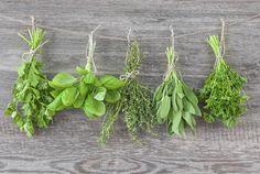 Bewährte Kräuterrezepte gegen allerlei Wehwehchen - Einfacher leben mit WIE EINFACH! - Schöne Sachen, die das Leben einfach machen.