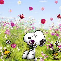 snoopy wallpaper - Buscar con Google