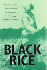 Black Rice: The African Origins of Rice Cultivation in the Americas ~ Judith Ann Carney ~ Harvard University Press ~ 2001