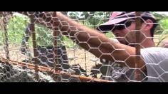 APAOKA - CURSO FERRO-CIMENTO : captação d´água de chuva
