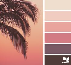 { summer hues } image via: @thebungalow22