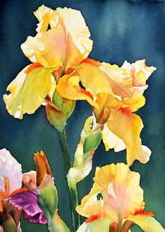 Portfolio of Krzysztof Kowalski's watercolor paintings. Take a look at beautiful nature inspired watercolor paintings. Iris Painting, Watercolor Painting Techniques, Acrylic Painting For Beginners, Watercolor Projects, Watercolor Trees, Yellow Painting, Watercolor Landscape, Watercolour Painting, Floral Watercolor
