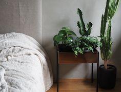 Viherkasvit makuuhuoneessa // LÖYTÖ
