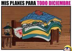 Siiiii con este pinche frío eso haré!!!!! Memes Estúpidos, Funny Memes, Love Sarcasm, Italian Humor, Mexican Humor, Spanish Memes, Pink Panthers, Adult Humor, Haha