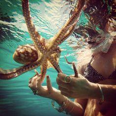 Octopus lovin'