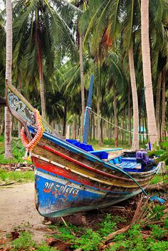 colourful boat sits amongst the coconut trees of Koh Samui in Natien, Thailand.  Photo: John and Tina Reid via Flickr