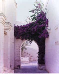 architecture photography exterior Holy this is beautiful Beautiful World, Beautiful Places, Beautiful Flowers, Beautiful Beautiful, Beautiful Pictures, Jolie Photo, Adventure Is Out There, Oh The Places You'll Go, Color Inspiration