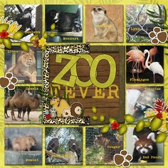 Zoo Fever scrapbook layout by Sarah Whithers. What a great way to get several pics onto a page.
