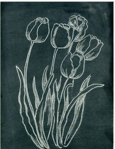 Blackboards with seasonal flower illustrations