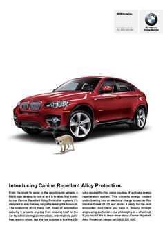 Picture of April Fools day advert - Canine Repellent Alloy Protection
