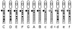 clarinet+hand+position | Scale on simple recorders - for better instruments fingering may be ...