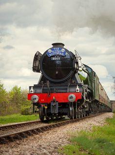 The Flying Scotsman - Bluebell Railway Steam Trains Uk, Uk Rail, Flying Scotsman, Modern Photographers, Train Art, Old Trains, British Rail, Train Engines, Rolling Stock