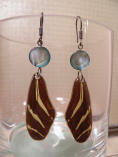 Zebra Butterfly and Shell Earrings on by BioArteNatureJewelry, $22.00