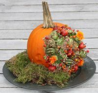 Workshops - GroenRijk Prinsenbeek - alles voor huis, tuin en dier. Pumpkin Floral Arrangements, Modern Flower Arrangements, Pumpkin Flower, Fall Diy, Holidays And Events, Flower Decorations, Fireworks, Diy And Crafts, Halloween