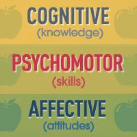 3 types of cognitive learning