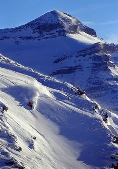 rider Sven Mermod @Leslie Rash Berckes Diablerets Swiss Ski, Ski Club, Swiss Design, Winter Fun, Homeland, Dream Life, Winter Wonderland, Switzerland, Paths