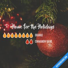 Home for the Holidays - Essential Oil Diffuser Blend