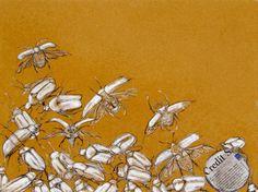 di Caterina luciano invertebrati - scarabei=rinascita