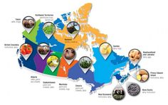 A map of Canada showing top commodities and agri-food exports in each province. Social Studies Communities, Northwest Territories, Canada, Prince Edward Island, Natural Resources, Geography, Ss, Study, Teacher