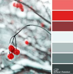 The Frosty Berries colour palette for your quilt inspiration is grey and red. Combine with white and/or black for even more impact! If you like this, pin and share!