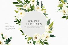 Watercolor White Flower Clip Art - hand drawn watercolor graphic elements, each element on an individual png with transparent background. by Graphic Box on @creativemarket
