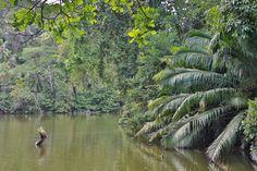 Lugares y rincones de los caminos coloniales de Panamá