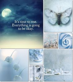 It is time to rest, everything is going to be OK. Inspirational quote with blue prophetic art butterfly and flowers. Collages, Pot Pourri, Color Collage, Mood Colors, Beautiful Collage, Jolie Photo, Chinoiserie, My Favorite Color, Shades Of Blue