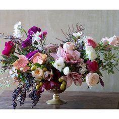 Holiday arrangement. #tulipina