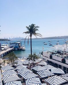 This view though.. Watsons Bay Boutique Hotel - Sydney