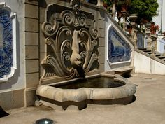 Castelo Branco - Jardim do Paço Episcopal / Bishop´s Palace garden