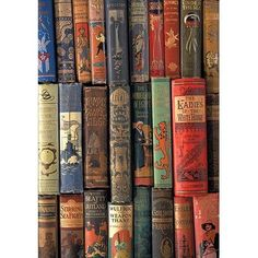 Buyenlarge 'Book Shelf' by Wilbur Pierce Photographic Print