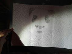 Dit is het uiteindelijke Resultaat van de panda de achtergrond heeft me drie en een half uur geduurd het was heel moeilijk omdat ik het zelf heb verzonnen alleen als voorbeeld de vorige foto ik vind het best goed gelukt.. de middelste strook is grijs