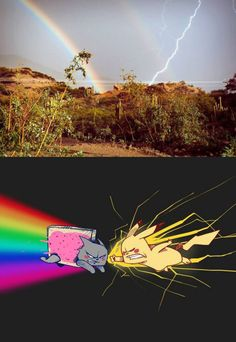 Nyan Cat vs Pikachu (Rainbow vs Lightning Bolt) - Funny Pokemon - Funny Pokemon meme - - Lo que la gente ve (ariva) Lo que yo veo (abajo) The post Nyan Cat vs Pikachu (Rainbow vs Lightning Bolt) appeared first on Gag Dad. Nyan Cat, Pikachu Cat, Really Funny Memes, Stupid Funny Memes, Funny Relatable Memes, Funny Geek, Hilarious, Pokemon Funny, Pokemon Go