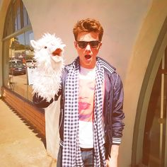 """Llamas don't really fit in anywhere, like me."" -Chris Colfer... well I know where he fits, in MY HEART :)"