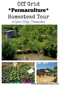 Off Grid Permaculture Homestead Tour: Spiral Ridge Permaculture