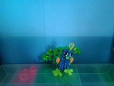 peacock- pauw