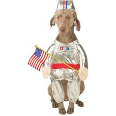 Pet Astronaut Dog Halloween Costume (Size: Small) by Pet Friendzy >>> Check out this great product. (This is an affiliate link and I receive a commission for the sales) Cute Dog Costumes, Pet Halloween Costumes, Dog Halloween, Halloween Ideas, Happy Halloween, Dog Diapers, Pet Clothes, Animal Clothes, Dog Hoodie