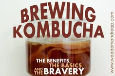 Brewing KOMBUCHA: The Basics, The Benefits, & The Bravery - Kombucha /kômˈbo͞oCHə/ a fermented drink so deliciously awesome that it will make you want to run around, your hands in the air, with the Rocky theme song