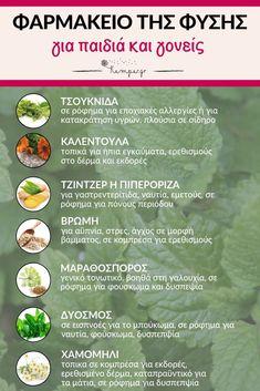 Φαρμακείο της φύσης - Pharmacy of nature - Pharmacy-of-nature Healthy Mind And Body, Healthy Life, Healthy Living, Health Diet, Health And Wellness, Health Fitness, Baby Food Recipes, Diet Recipes, Healthy Recipes
