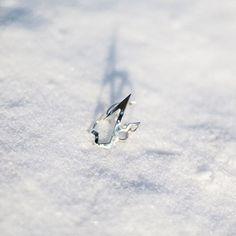 Pierścionek z kolekcji #LOVEME @mateuszsuda dla @altradea w ❄️ wygląda pięknie, prawda ? więcej zdjęć na FB:@picapicapl  #ring #jewellery #snow #silver #beautiful #day #sunny #snow #winter #ring #frozen #blogger #snowflake #nature #crystals #cold #shape Frozen, Silver Rings, Stud Earrings, Instagram Posts, Beautiful, Jewelry, Jewlery, Jewerly, Stud Earring