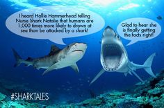 These #sassysharks love gossip and Tiana Tiger Shark and Glenda the Great White have a lot to say this @sharkweek . The likelihood of being attacked by a shark is one in 11.5 million. You are actually more likely to be killed by a dog, snake, or in a car collision with a deer! Share their ‪#‎sharktales‬! ‪#‎SharkWeek‬