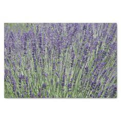 Lavender Floral Tissue Paper