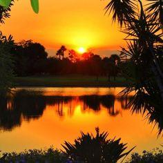 Palm Beach Gardens Florida Sunset❤