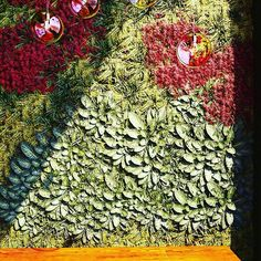 ¿Te imaginas cómo quedaría un jardín vertical en tu restaurante? ¿O en tu terraza? ¿¿¿¡¡O en tu cocina!!?? Te ayudamos a que te lo imagines... #3dmodel #3d #3dmodeling #kitchen #design #deco #3dmax #corona #coronarender #vegetalpanel #vegetal #jardinvertical #render #architecturevisualization #cgi #cg #restaurant #infoarquitectura #instarender #infographic #renderporn #architectureporn #malaga