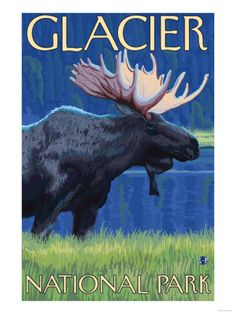 a picture says a thousands words - amazing Glacier National Park, Montana