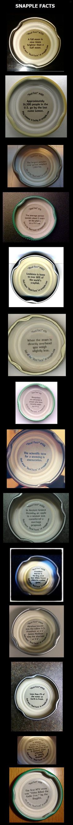Snapple facts  // funny pictures - funny photos - funny images - funny pics - funny quotes - #lol #humor #funnypictures