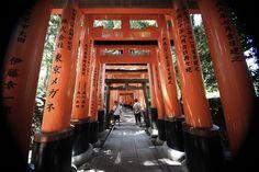 伏見稲荷大社 sher she goes mountain trail fushimi inari temple shrine fox tori gates gate rice bunsha business worship kyoto travel japan japanese