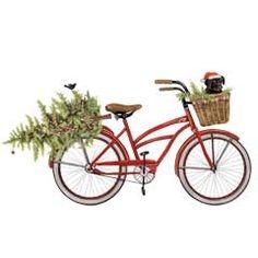 bike with tree